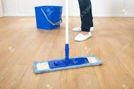 Shark Steam Mop Old Hardwood Floors by Shark Steam Mop Laminate Hardwood Floors Pocket Wood Bissell Safe