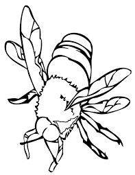 Awesome Free Printable Bees Insect Coloring Pages For Kids
