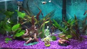 Spongebob Fish Tank Decorations by Sponge Bob And Skeleton On A Toilet Youtube
