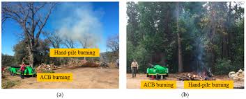 Air Curtain Destructor Burning by Forests Free Full Text Air Curtain Burners A Tool For