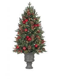 Plantable Christmas Trees Columbus Ohio by Small Decorated Christmas Tree Christmas Lights Decoration