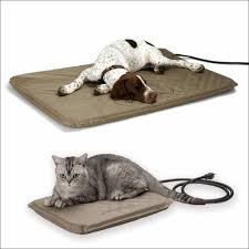 Dallas Manufacturing Company Dog Bed by Living Room Fabulous Dallas Manufacturing Company Inc Dmc Cozy