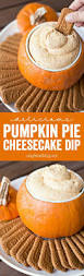 Night Owl Pumpkin Ale Clone by 331 Best Ideas About Certified Pastry Aficionado Recipes On