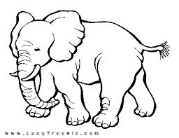 Wildlife Coloring Page African Safari Elephant
