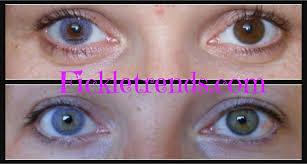 Halloween Contacts Non Prescription Fda Approved by 16 Halloween Contacts Non Prescription Fda Approved 100