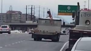 Naked Man Jumps Onto Moving Truck Near Dulles Airport - NBC4 ... Young Ucf Tpreneur Moves Up In Moving Business The Day 2 Men A Truck Chase Down Texas Urch Shooter Lets Removals House Office Movers Two Men And A Truck Help Rescue Driver Passenger Trapped Pickering Gear And Us Deliver Hospital Gifts For Kids Wixycom Amazing Crew Customer Service Review Of Masterminds 2016 Movie Scenes News Elkodailycom Apollo Strong Moving Arlington Tx Upfront Prices Pricing Pority One Hauling