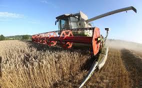 chambre agriculture oise prix et rendements en hausse ne sauvent pas les agriculteurs de l