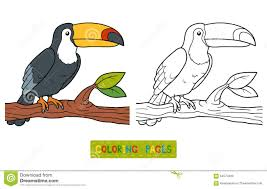 Toucan Dot To Dot Free Printable Coloring Pages