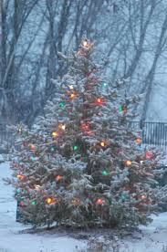 Kohls Christmas Tree Lights by 1862 Best Images About It U0027s Christmas On Pinterest Christmas