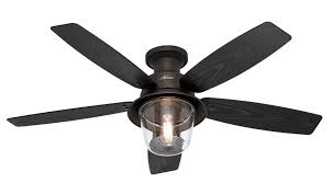 Hampton Bay Ceiling Fan Replacement Blades by Lights Hunter Lights And Ceiling Fans Photo With Remote Getting