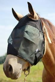 Amazon.com : Horse Fly Mask, All Around Barn, Stable, Pasture ... Defeat The Enemy Fly Control Options For Horse And Barn Music Calms Horses Emotional State The 1 Resource Breyer Crazy In At Schneider Saddlery Horsedvm Controlling Populations Around Oftforgotten Bot Equine Dry Lot Shelter Size Recommendations Successful Boarding Your Expert Advice On Horse 407 Best Barns Images Pinterest Dream Barn Barns A Management Necessity Owners Beat Barnsour Blues Care Predator Wasps Farm Boost Flycontrol Strategies Howto English Riders