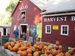 Pumpkin Patch Omaha by The Daily Tay A Fall Getaway To Nebraska