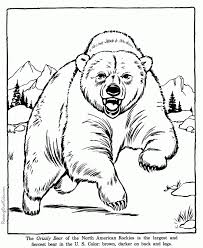 Bear Coloring PagesColoring Pages