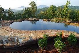Swimming Pond Guide - Swimming Pond: Free Chemical Swimming Pool ... Beautiful Backyard Ponds And Water Garden Ideas Pond Designs That 150814backyardtwo022webjpg Decorating Pictures Hgtv 13 Inspirational Garden Society Hosts Tour Of Wacos Backyard Ponds Natural Swimming Pools With Some Plants And Patio Design In Ground Goodall Spas Small Pool Hgtvs Modern House Homemade Can Add The Beauty Biotop From Koi To Living Photo Home Decor Room Stunning Landscaping