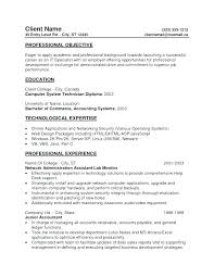 Resume Career Profile Examples For Resumes Professional Of Profiles Sample