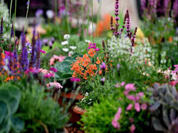 100 Www.home And Garden Chorley Flower Show 2019 28 Beautiful Pictures From One Of The