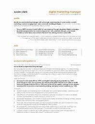 Resume Samples Marketing And Sales Fresh Template