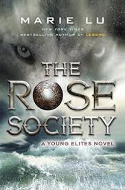 The Rose Society Recap