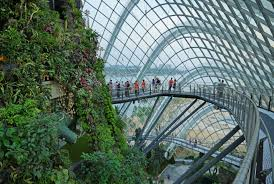 File Cloud Forest Gardens by the Bay Singapore 03
