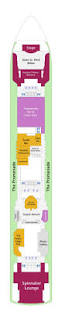 Norwegian Dawn Deck Plan 11 by Gift Shop Norwegian Dawn Cruisebe