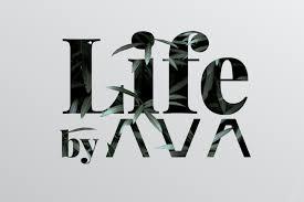100 Ava Architects Life By AVA Creative Industries Styria