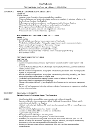 Customer Service Executive Resume Samples | Velvet Jobs Interior Design Cover Letter Awesome Graphic Example Customer Service Resume Sample 650778 Resume Sample Of Client Service Representative Samples Velvet Jobs Manager Filipino Floatingcityorg 910 Summary Samples New Sales Assistant Nosatsonlinecom Customer Objective Wwwsailafricaorg Monstercom And Writing Guide 20 Examples Rep Forallenter Job With No Experience For Call