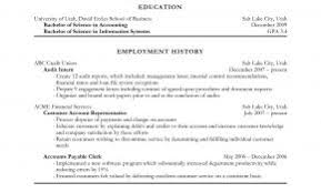 Resume Examples Low Experience Elegant Accountant Objective Down Town Ken More