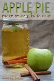 Best Pumpkin Pie Moonshine Recipe by Homemade Apple Pie Moonshine Recipe U2013 Learn To Moonshine