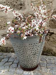 Different Type Of Rustic Metal Olive Bucket Baskets Excellent Condition Great Idea For