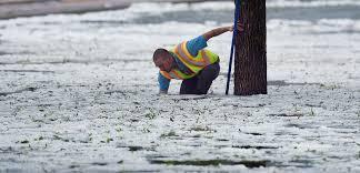 Colorado Springs CO Colorado City Sends Snowplows To Clean Up