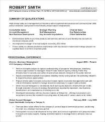Professional Experience Resume Example