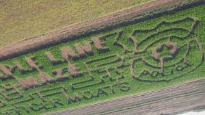 Lane Farms Pumpkin Patch 2015 by Maple Lane Farms Corn Maze Design Honors Officer Kenny Moats