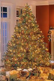 Roman Bethlehem Pre Lit Douglas Fir Christmas Tree QVC
