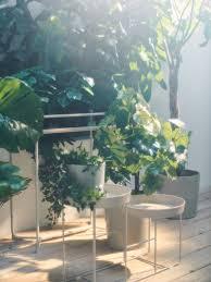 pflanzen pflanzentöpfe ikea deutschland
