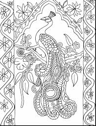 Outstanding Peacock Adult Coloring Pages Printable With Color And Awesome