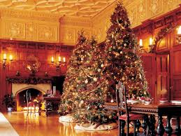 Top Live Christmas Trees by 5 Interior Designer Approved Holiday Decorating Tips Hgtv U0027s