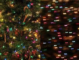 Mr Jingles Christmas Trees San Diego by Pandaphilia 2011
