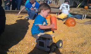 Pumpkin Patch Sacramento Groupon by These 5 Pumpkin Farms In Northern California Will Get You Into The