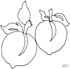 Peaches Coloring Pages Select From 27197 Printable Of Cartoons Animals Nature Bible And Many More