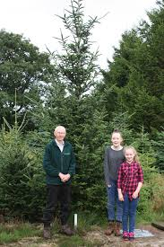 The Tree Barn Blackrod donates Christmas Trees for Rainbow House