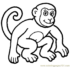 Zoo Animals Coloring Pages 3