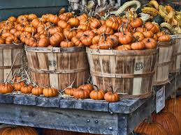 Wisconsin Pumpkin Patches 2015 by 24 Pumpkin Patches Near Washington D C Mapped