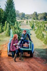 Dillards Christmas Tree Farm by Holiday For Every Occasion Southern Living