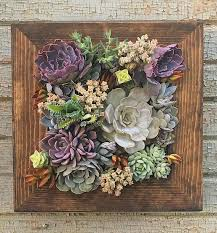 12x12 Living Wall Succulent Planter Vertical