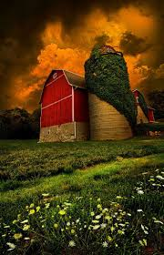 I Love The Ivy On The Top Of The Solo, The Red Barn Against The ... Collage Illustrating A Rooster On Top Of Barn Roof Stock Photo Top The Rock Branson Mo Restaurant Arnies Barn Horse Weather Vane On Of Image 36921867 Owl Captive Taken In Profile Looking At Camera Perched Allstate Tour West 2017iowa Foundation 83 Clip Art Free Clipart White Wedding Brianna Jeff Kristen Vota Photography Windcock 374120752 Shutterstock Weathervane Cupola Old Royalty 75 Gibbet Hill