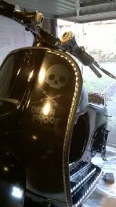 Front Leg Shield Death Proof Skull Lightening Motif Again Using The