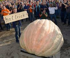 Heaviest Pumpkin Ever by The Secret To Growing The World U0027s Largest Pumpkin Science