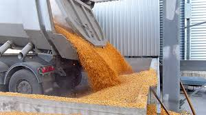 Agriculture Truck Loading Corn In Silos Storage ,Slow Motion Stock ... Xcmg Truck Loading Machinery Mini Wheel Loader Lw300kv With Ce View Automatic Stackerautoritymanjusgujaratindia Loader Nm Heilig Steel Platforms And Stairs Saferack Industrial Automated Loading Unloading Of Trucks A Fxible Largest Supplier Truck Systems Saferack Forklift Loading10 Wiri Timber Conveyor Ndan Gse Safety Access Platform Alisafe Warehouse Bay Stock Photo Balonci 184391124 Single Hatch Fall Protection Systems Carbis