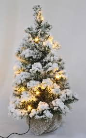 The 60cm Battery Pre Lit Snow White Fir Tree