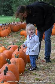 Pumpkin Patch Clarksville Tn 2015 have a safe and fun halloween clarksville tn online